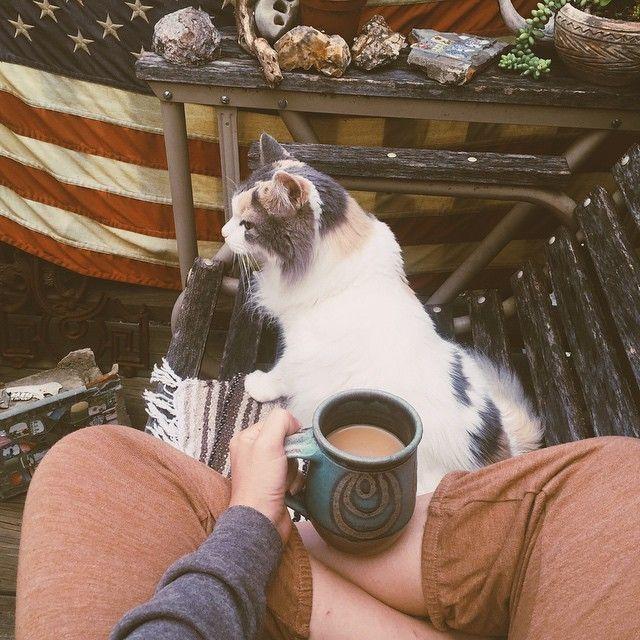 """Morning coffee with Bella  #bellarosamaz"" Instagram: lauramazurek"
