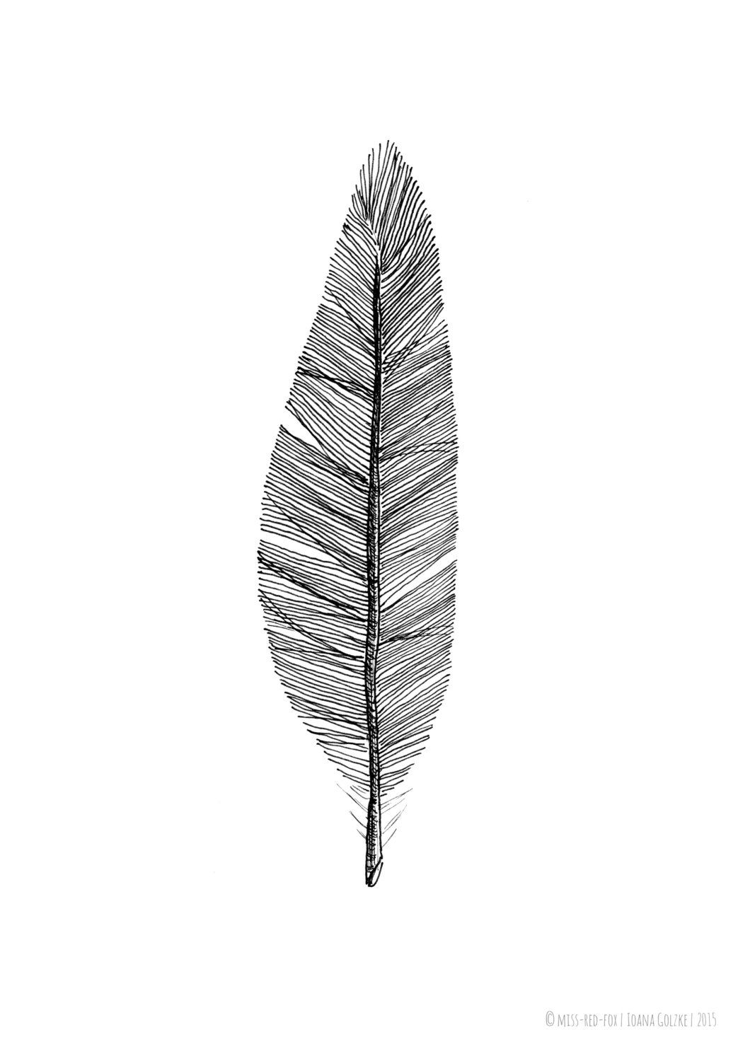 FEATHER, poster, print, black and white, drawing, illustration, gift ...