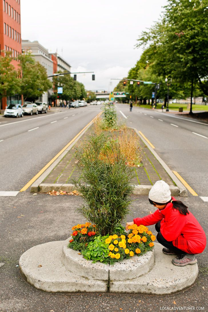 Mill Ends Park in Portland Oregon is the World's Smallest Park + 25 Most Instagrammable Places in Portland // Local Adventurer #pdx #portland #localadventurer #travelportland #traveloregon #oregon