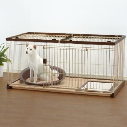 Easy Clean Dog Crates Easy Clean Pet Crate Pet Crate Clean Pet Easy Pets