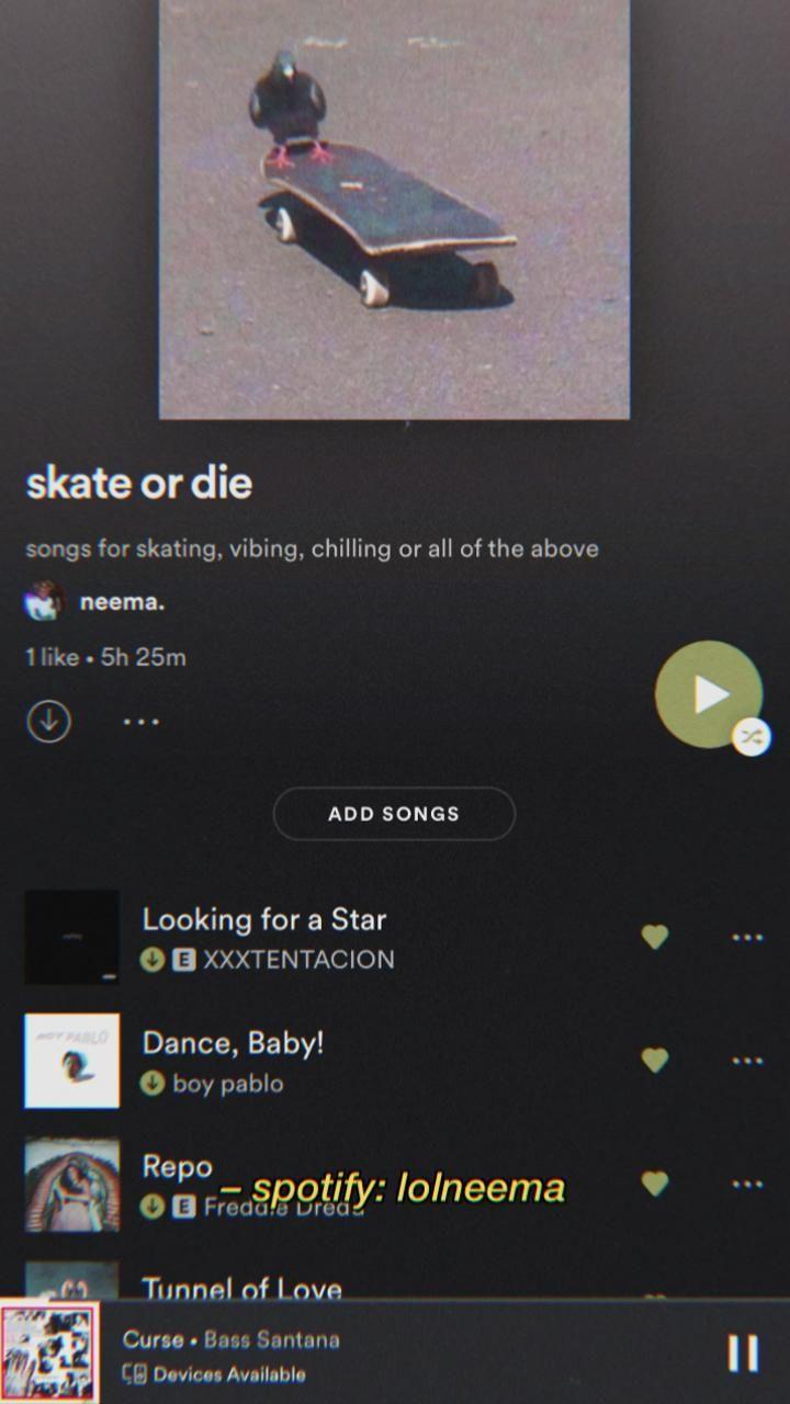 skateboard aesthetic spotify playlist
