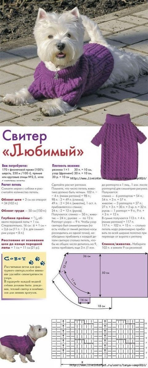 Dog sweater knitting needles...♥ Deniz ♥ | Mimo | Pinterest ...