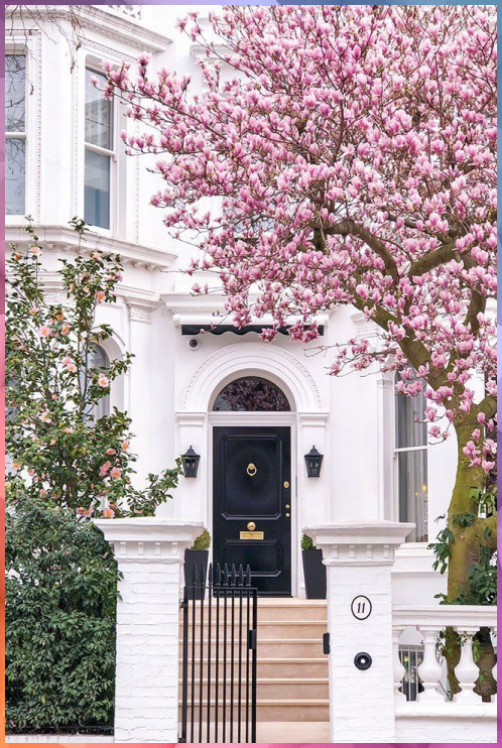 Where To See Magnolia And Cherry Blossom In London Printable Guide And Map Where See Magnolia And Cherry Garden Design Formal Garden Design London House