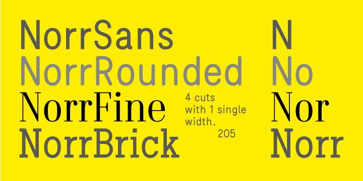 Norr®: a font family with 4 cuts (sans, rounded, didot and
