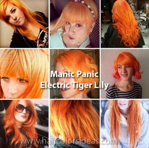 manic panic electric tiger lily - Google Search