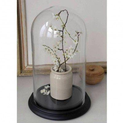 Grand globe verre socle bois noir verre bois et cloche en verre - Cloche verre socle bois ...