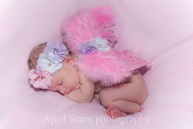 Photo collection by april sears photography newborn babygirl newbornphotography april sears photography pinterest