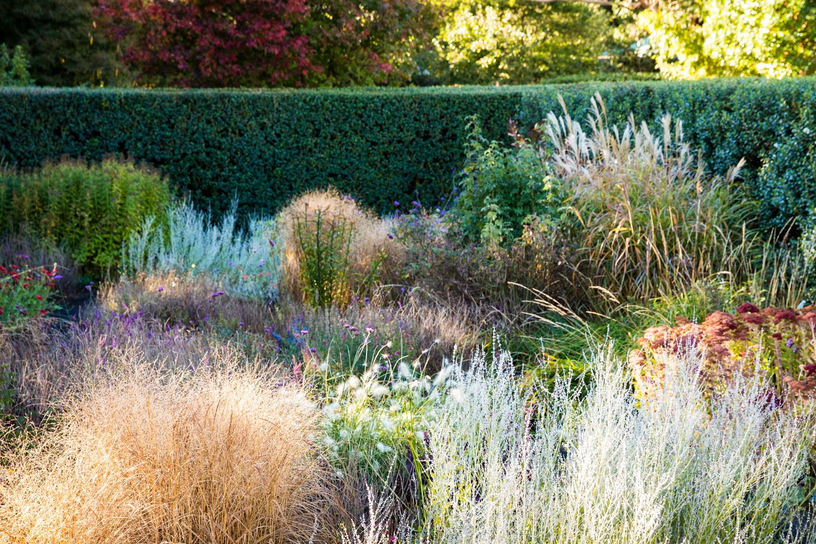 australian dreamscapes  the art of gardening