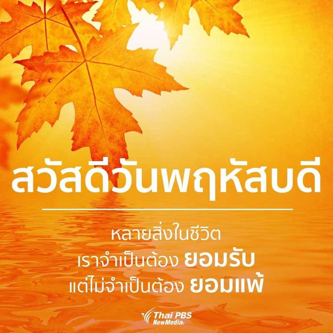 Thai Pbs ไทยพ บ เอส Thaipbs เพ มร ปภาพในบ ญช Instagram ของเขา สว สด ว นพฤห สบด หลายส งในช ว ต เราจำเป นต องยอมร บ แต ไ สว สด ว นพฤห สบด อร ณสว สด