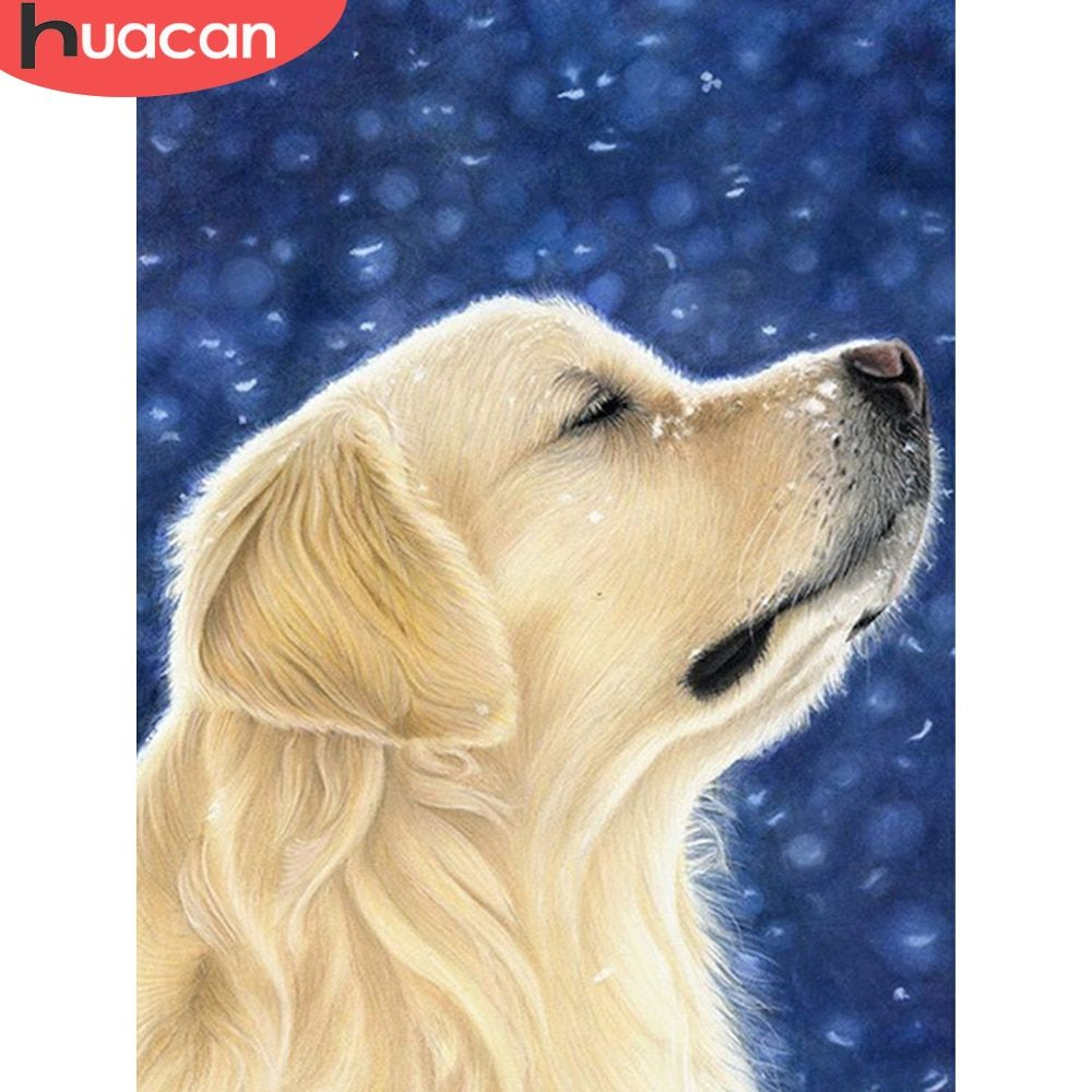 Huacan 5d Diamond Painting Animal Dog Full Square Embroidery Sale Picture Rhinestone D In 2020 Golden Retriever Drawing Golden Retriever Painting Dogs Golden Retriever