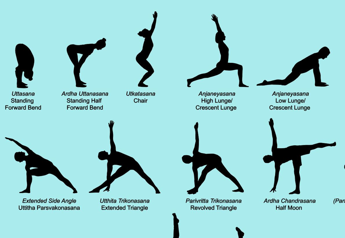 68 VECTOR Yoga Poses, each with its English and Sanskrit ...