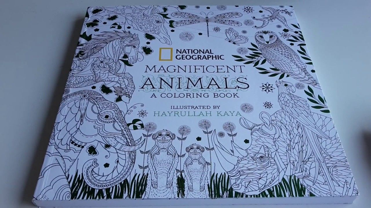 Colors Make You Happy Vol 1 Coloring Book Review Miki Takei Coloring Books Are You Happy Books