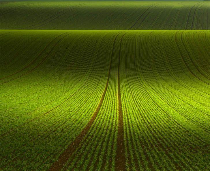 November Green Is A Beautiful Landscape Photo By Franz Schumacher Green Landscape Behind The Green Door Green