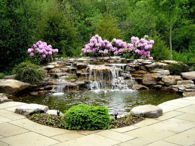 Wohlfühl-Oase mit Wasserfall gestalten-rosafarbene Blüten - bilder gartenteiche mit bachlauf