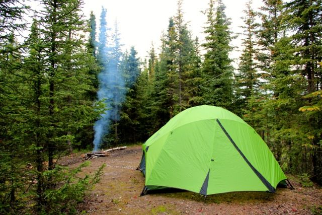 Camping in the wilderness!