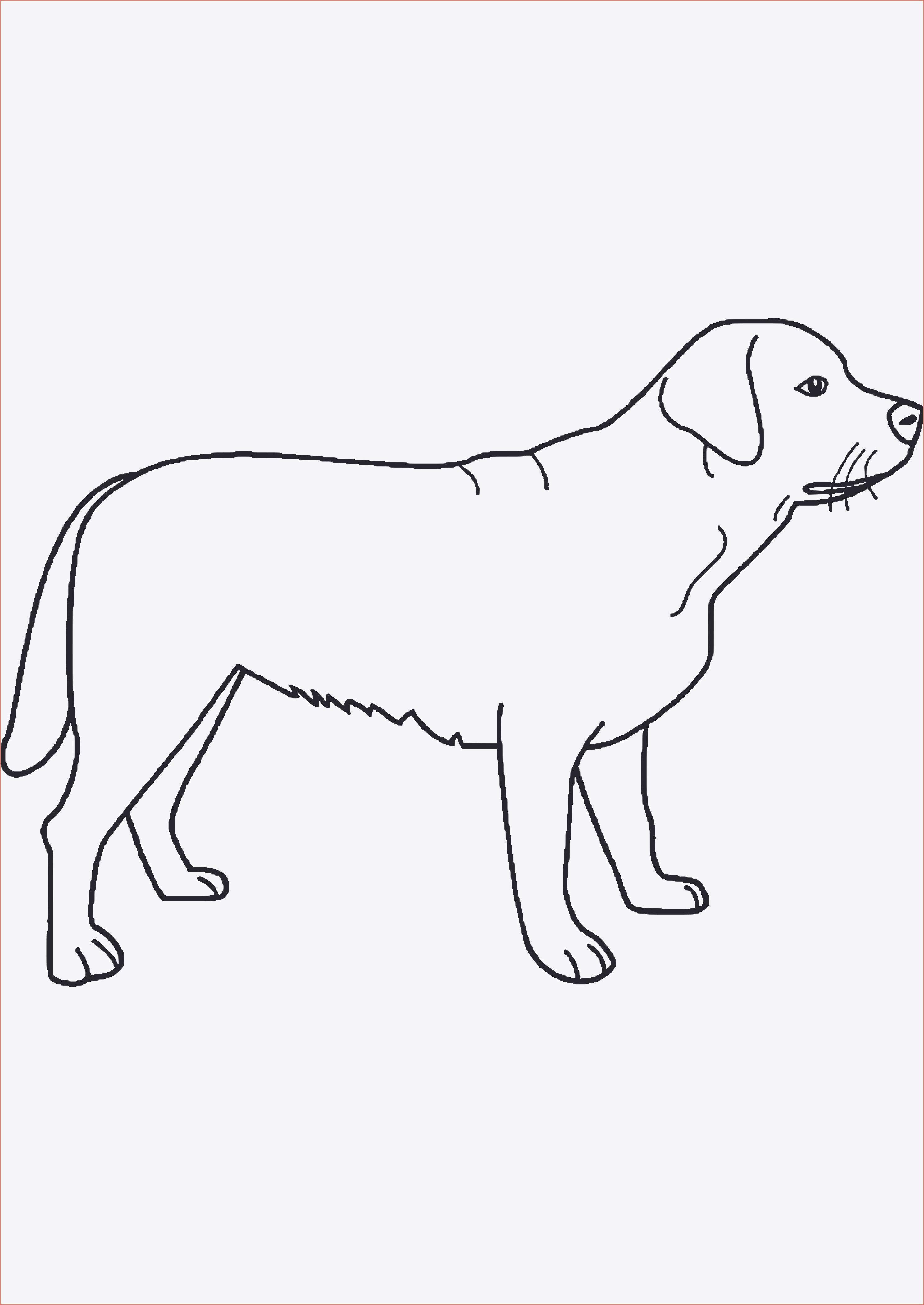 Neu Ausmalbilder Tiere Hunde Welpen Ausmalbilder Tiere Hunde