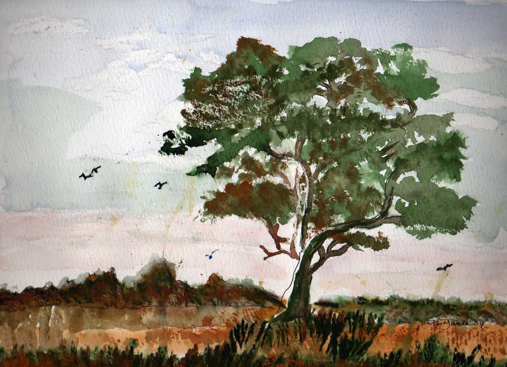 Easy watercolor paintings of trees for How to paint a tree