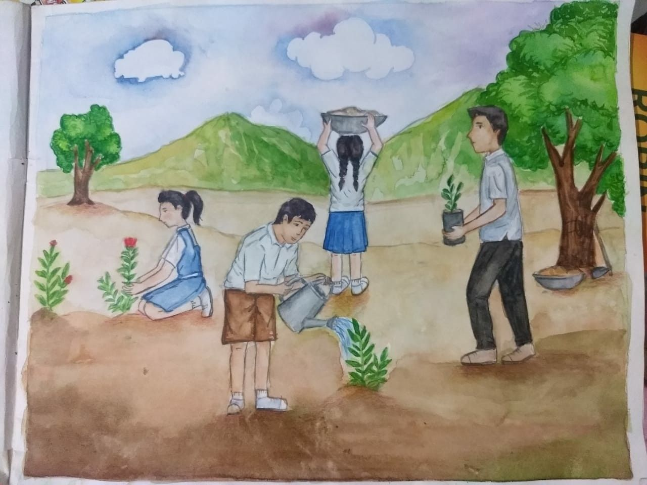 Tree Plantation Drawing Images In School