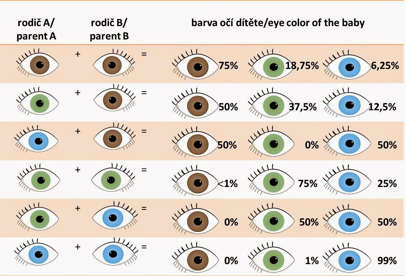 Eye color of your baby perfectdaysczspot perfect days eye color of your baby perfectdaysczspot geenschuldenfo Choice Image