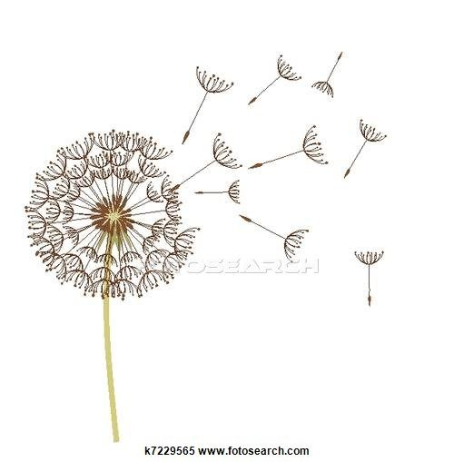 Pissenlit clipart format eps pissenlits et eps - Dessin fleur pissenlit ...