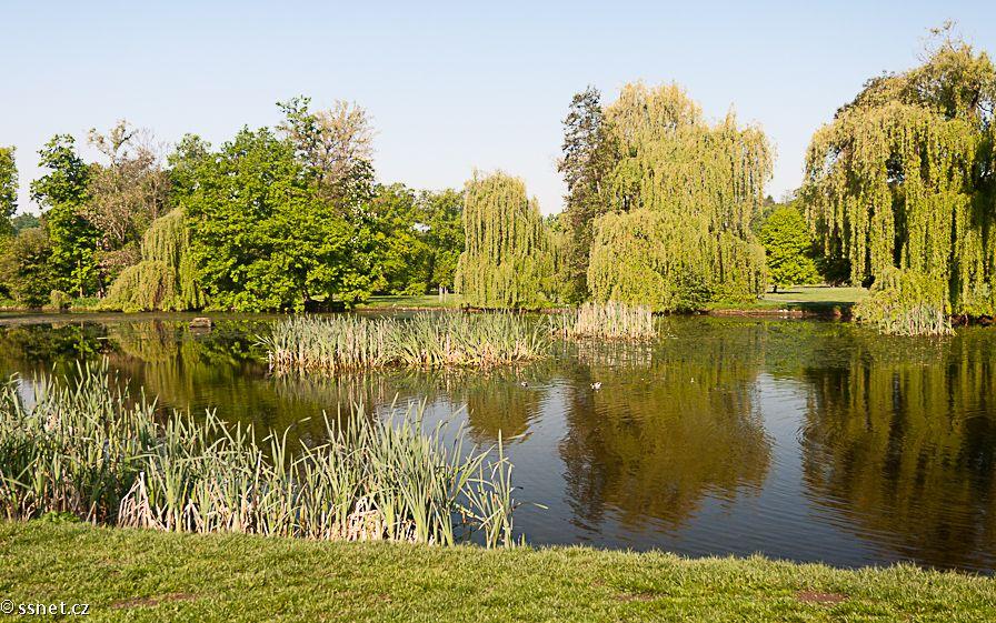 Public Parks that Allow BBQs! | Foreigners.cz Blog