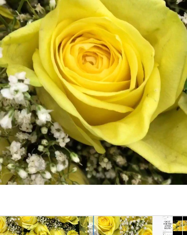 Floral design tip yellow flowers say true friendship and happiness floral design tip yellow flowers say true friendship and happiness whats your fav flower in wedding florals estrellasdecorvideos mightylinksfo