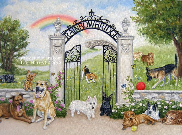 The Rainbow Bridge By Lara Harris Dog Heaven Rainbow Bridge Dog