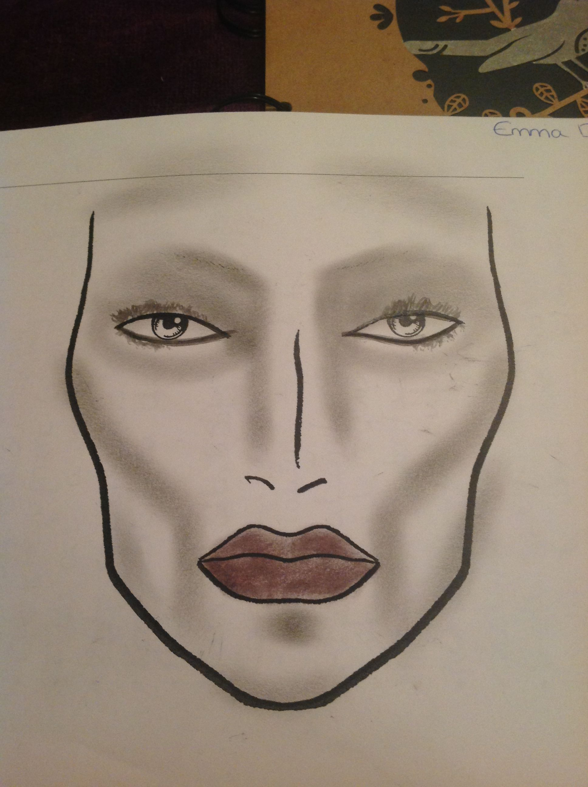 Highlighting And Shading Face Chart Actice Makes