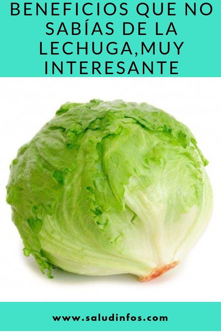 Beneficios Que No Sabías De La Lechuga Muy Interesante Sabías Lechuga Interesante Iceberg Lettuce Lettuce Weird Food