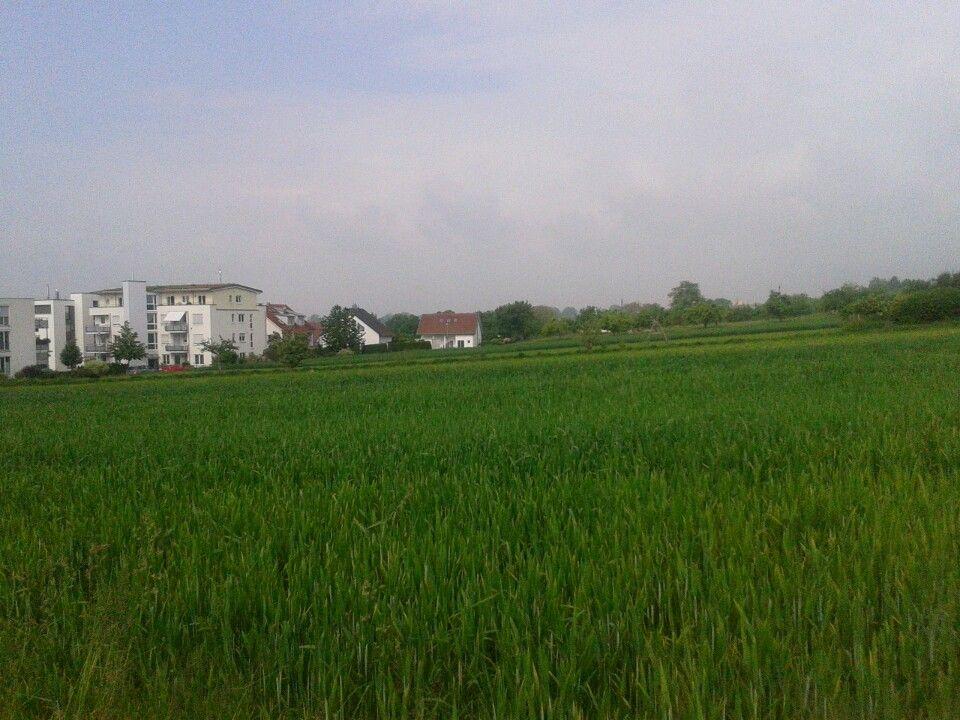Ostfildern-Nellingen