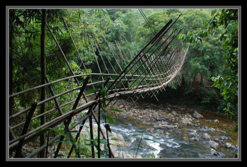 Bamboo Suspension Bridge - Kg Bengoh, Sarawak