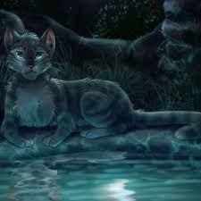 Jayfeather Mangel S Spot Warrior Cats Series Warrior Cats