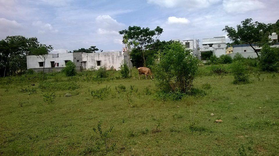 Home for sale in salem land for sale salem sale