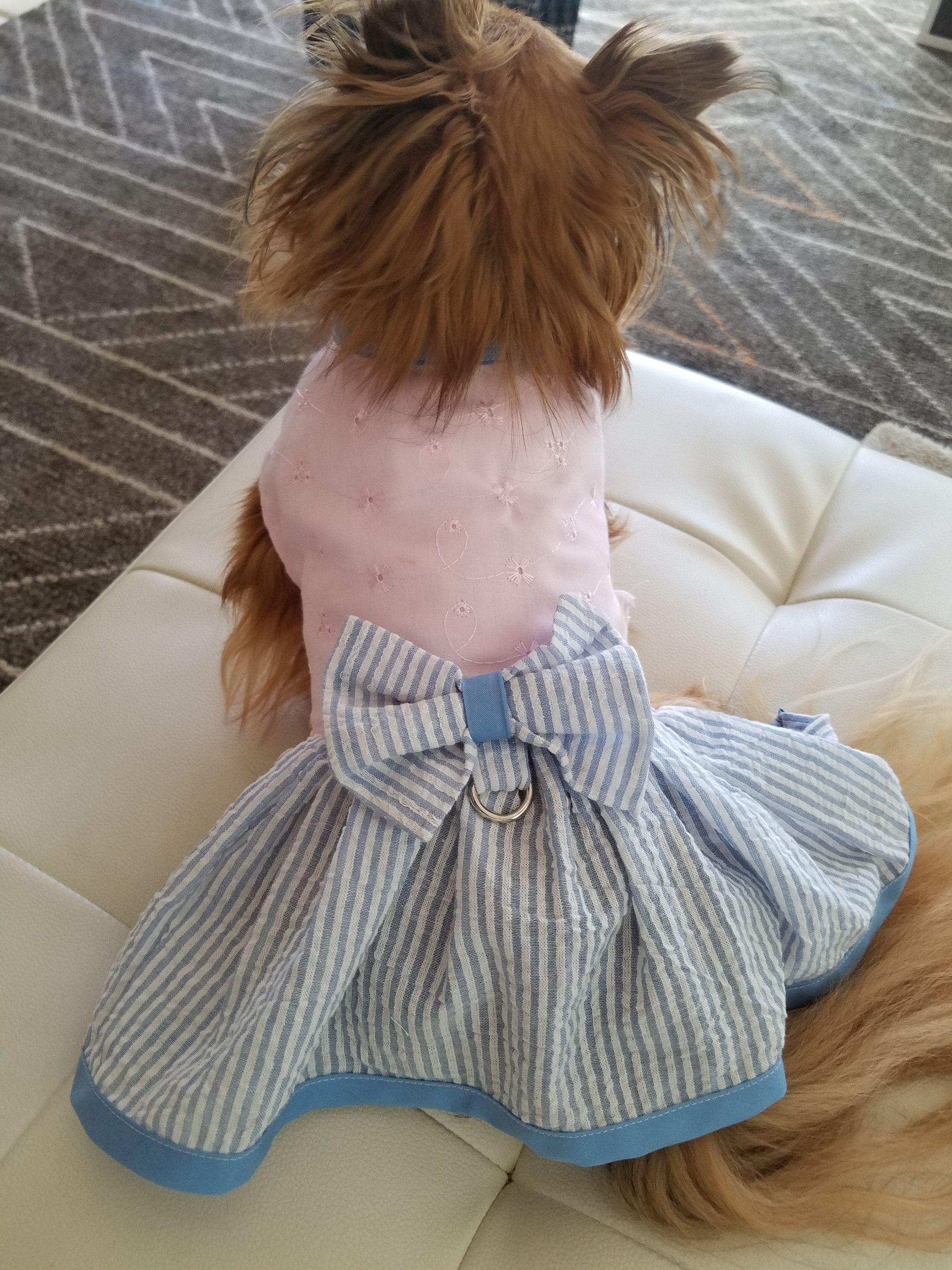 Dog Dress Summer Puppy Dress Pet Apparel Dog Clothes Dog