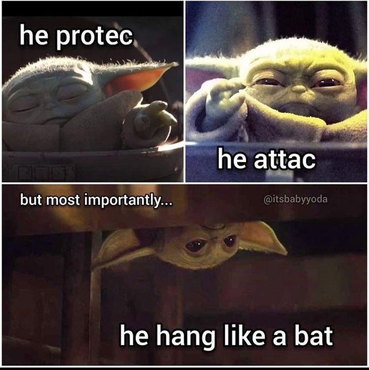 Baby Yoda Protec Attac Bat In 2020 Funny Star Wars Memes Star Wars Jokes Star Wars Memes