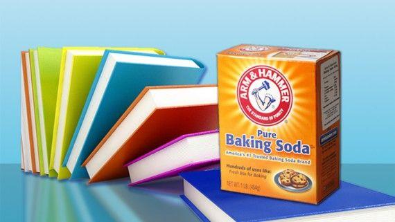 Baking Soda NL is de grootste leverancier van Arm & Hammer baking soda in de Benelux. Nature Essentials is de merkaanduiding voor natuurlijke producten.