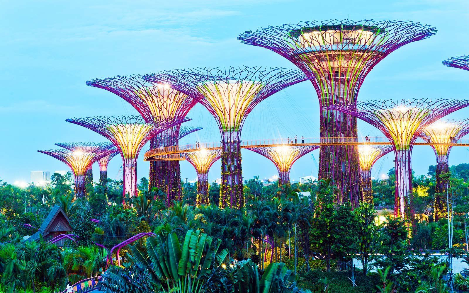 9cc15cadd3f058ee318b0956915bfb70 - Best Time To Go To Gardens By The Bay