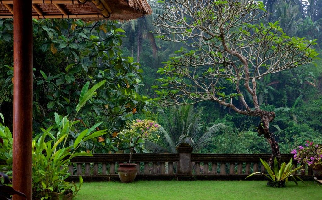 Bali resort, Green lawn and Bali on Pinterest
