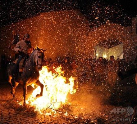 動物の守護聖人祭る儀式、スペイン各地で開催
