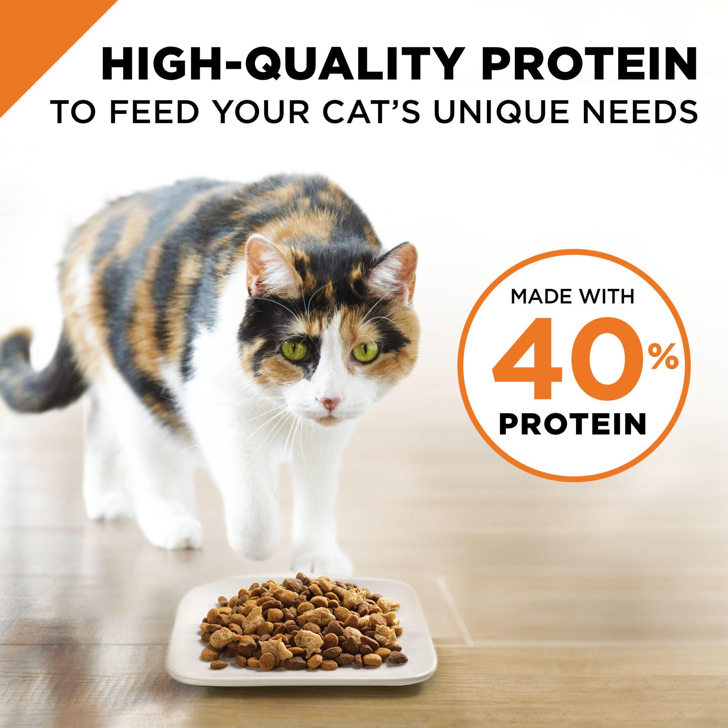 Purina Pro Plan Savor Adult Shredded Blend Chicken And Rice Formula Adult Dry Cat Food 1 6 Lb Bag Visit The Image Li Dry Cat Food Purina Pro Plan Cat Food