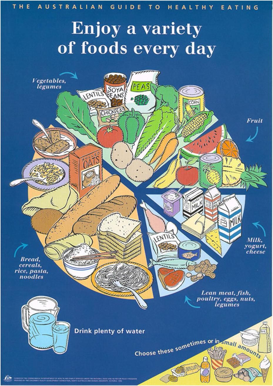 Wow how different from the usa pyramid enjoy a variety of foods xosize health and fitness solutions healthy eating pie chart nvjuhfo Gallery