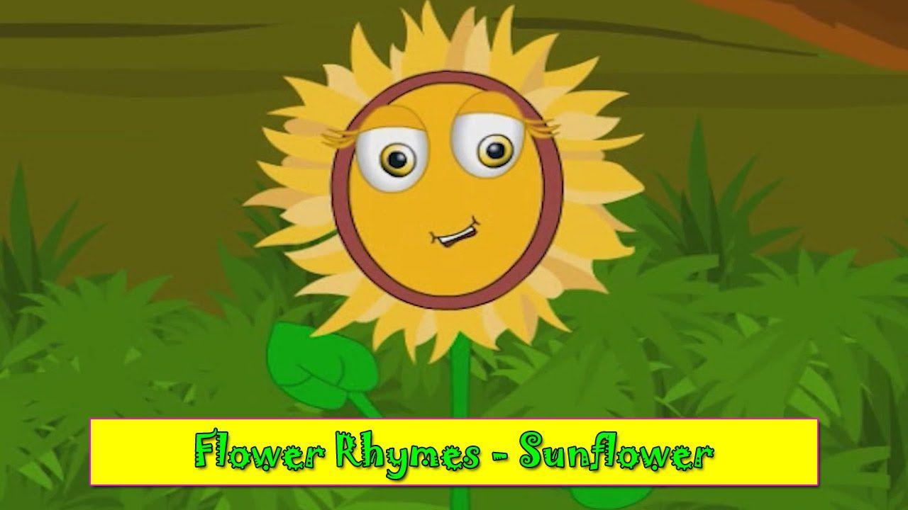 Sunflower Rhyme | Flower Rhymes for Children | Nursery Rhymes for ...