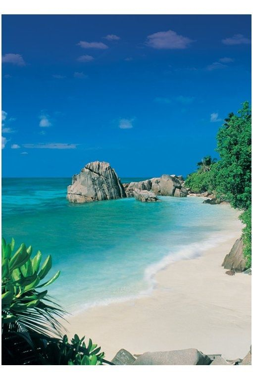 Bahamas Honeymoon Bucketlist Destinationwedding Bride Marriage Tropical Caribbean