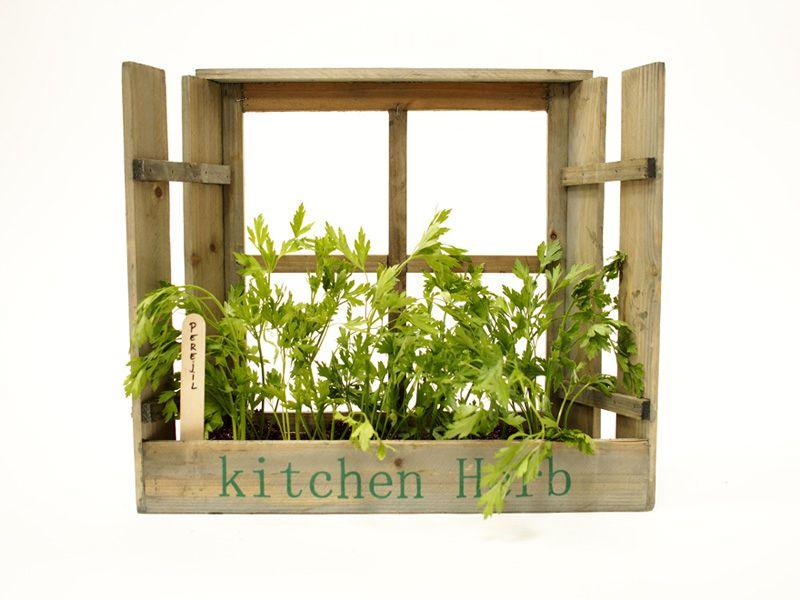 jardinera forma de ventana siembra tus plantas aromticas para cocinar mini