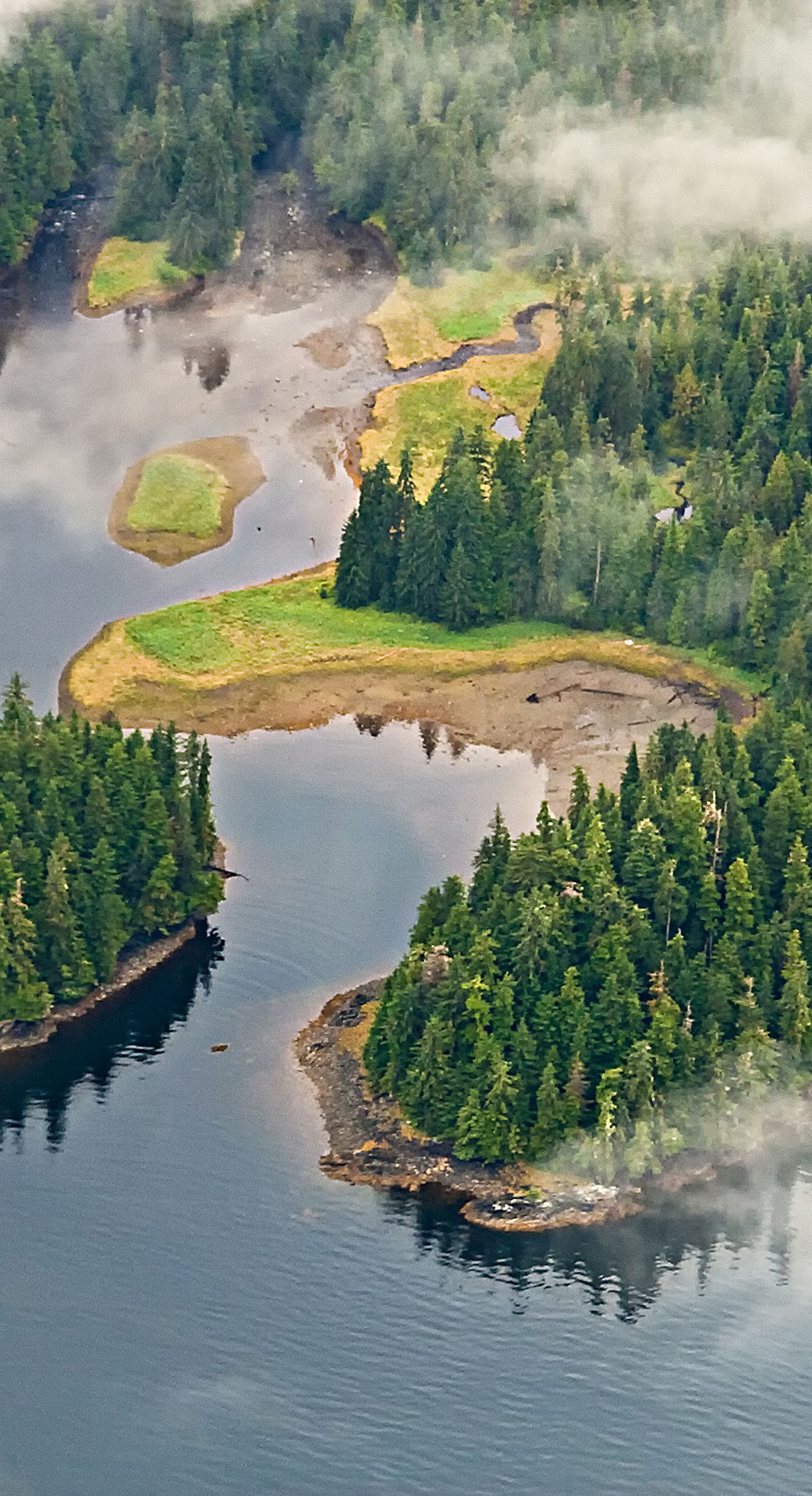 Aerial view of the Misty Fjords National Monument, Alaska