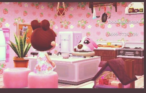 Animal Crossing Happy Home Designer Cookie Kitchen Room