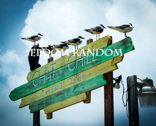 Birds on the Sign for Chat 'n' Chill Bar in Exuma by SeldomRandom, $24.00
