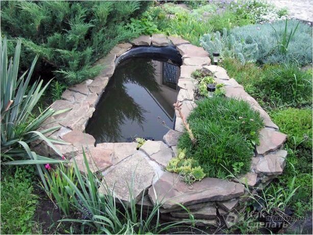 estanque tortugas bañera - Buscar con Google