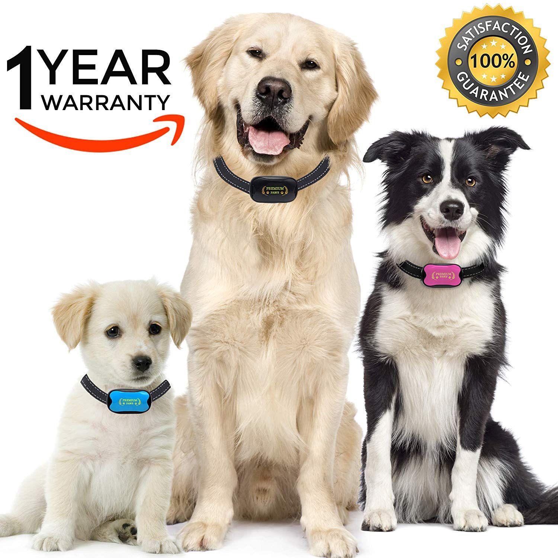 Premium Paws Advanced Intelligence Anti Bark Dog Collar Stop Dogs