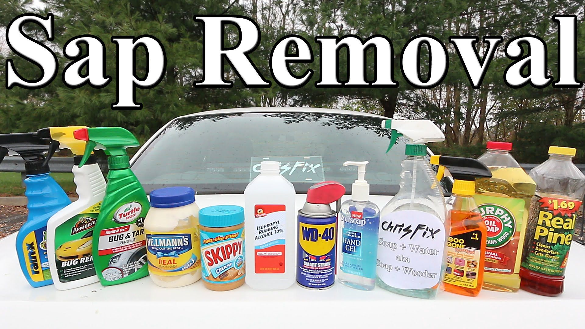 What Should You Use To Remove Tree Sap From Your Car Cartips